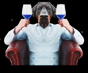 perro-con-gik-blue